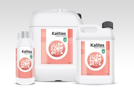 Kalites